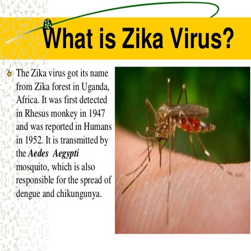 symptoms-diagnosis-treatment-all-about-zika-virus-3-638